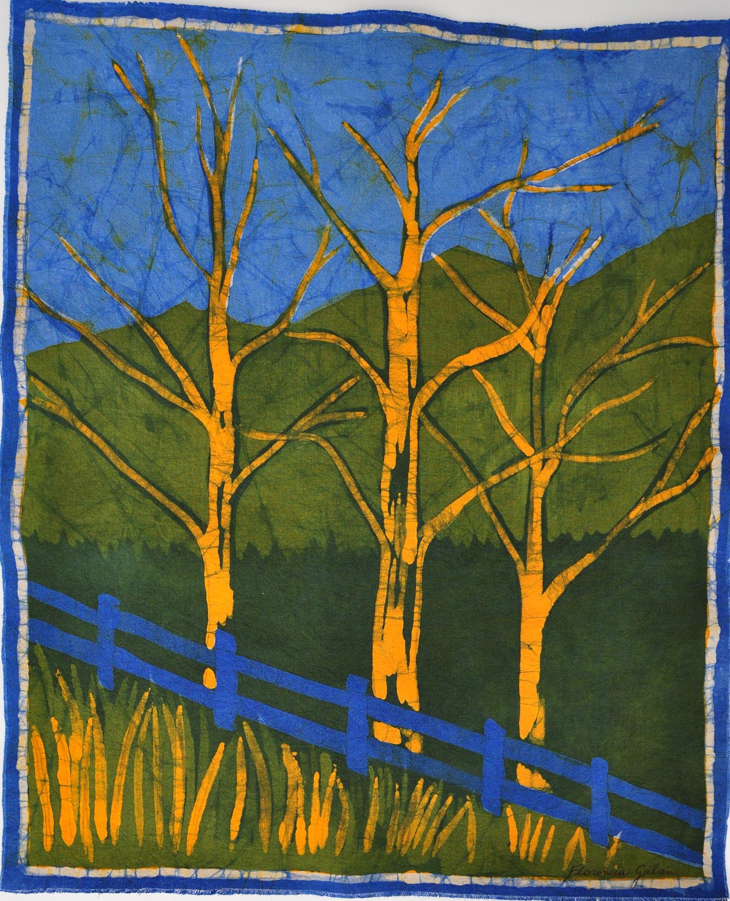 Paisaje-bosque